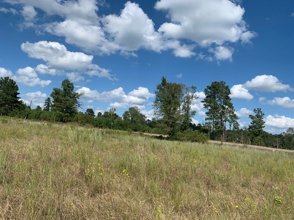 SMALL ACREAGE FOR SALE IN EAST TEXAS