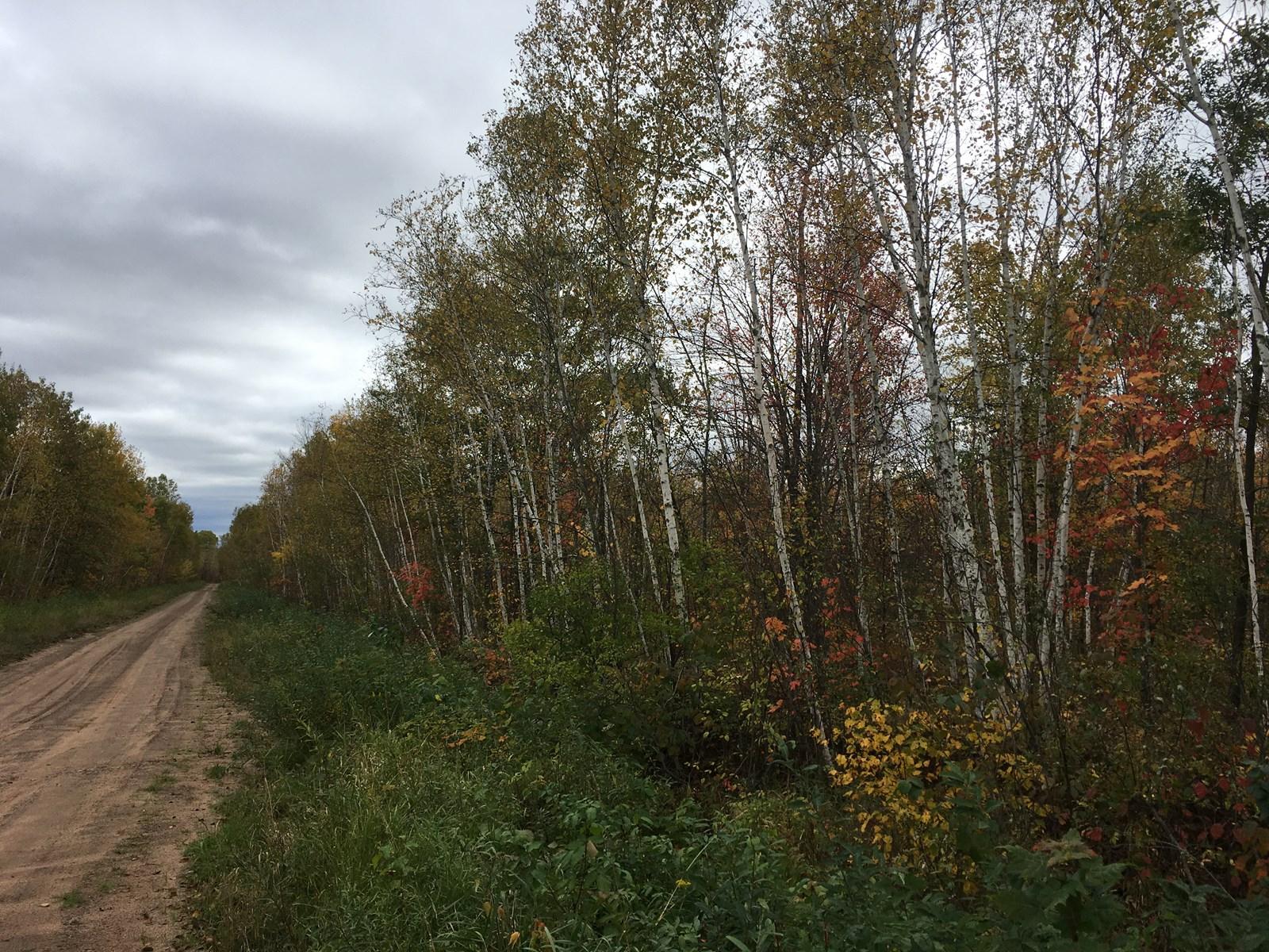 Hinckley, Minnesota Acreage For Sale in Northern Minnesota