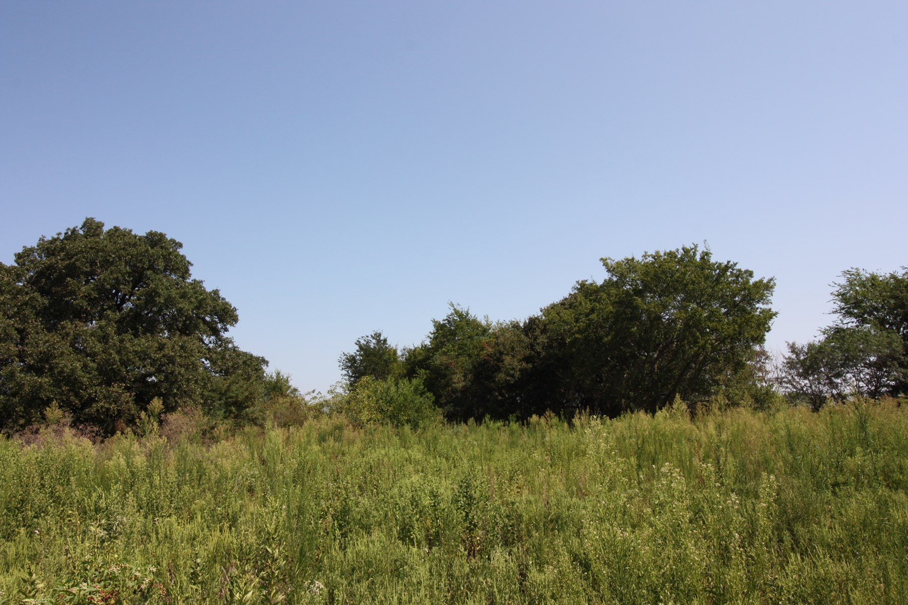 Land For Sale in Limestone County, Texas