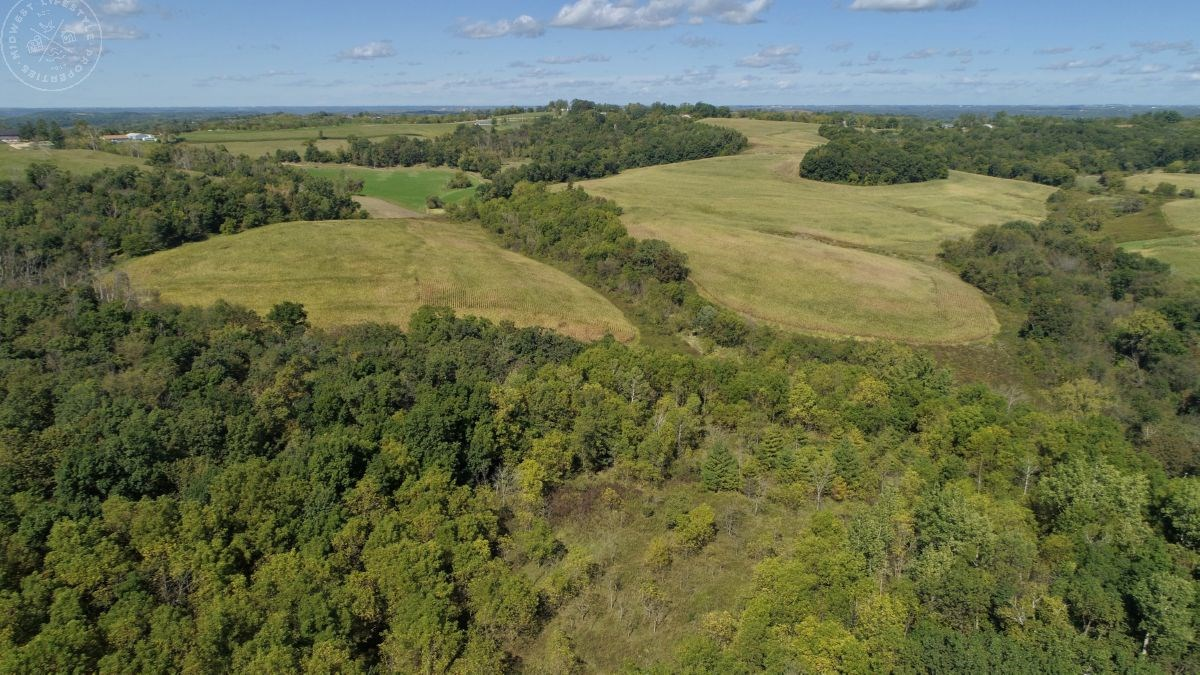 Investment Property with Giant Whitetail in Vernon County, W