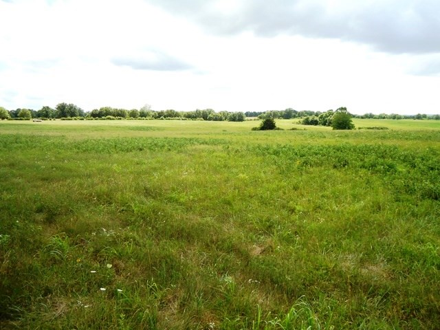 South Central Missouri Farm for Sale - Wright County, MO
