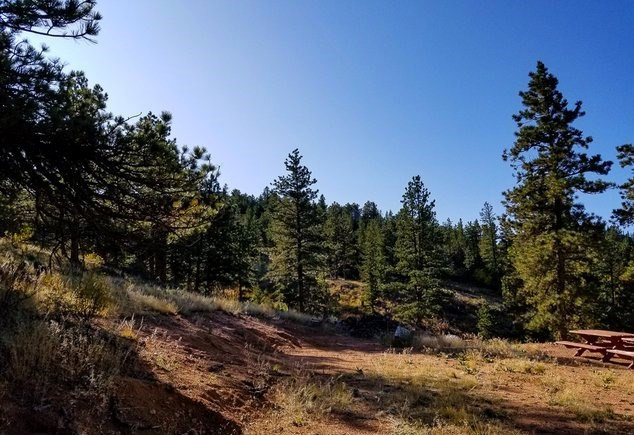 Build Able Mountain Lots in Norther Colorado