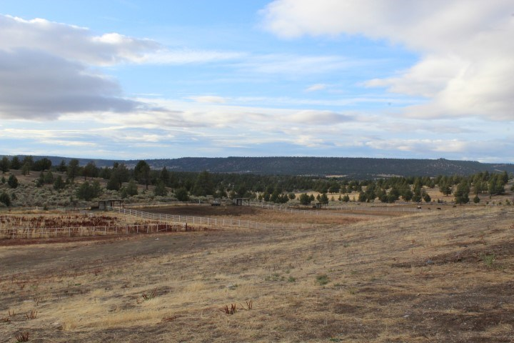 Horse Property For Sale in Modoc County.