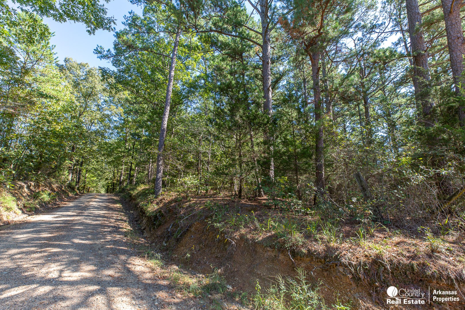 5.04 Wooded Acres
