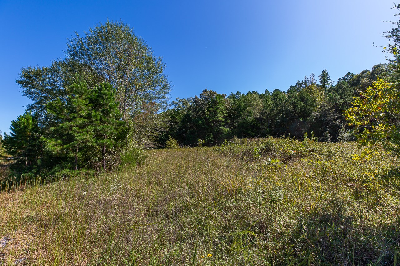 10 Acre Wooded Tract
