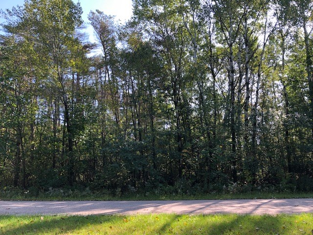 Vacant Land for Sale in Portage County, WI
