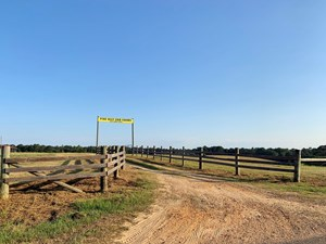 98 ACRE SOD FARM FOR SALE POPLARVILLE, PEARL RIVER COUNTY MS