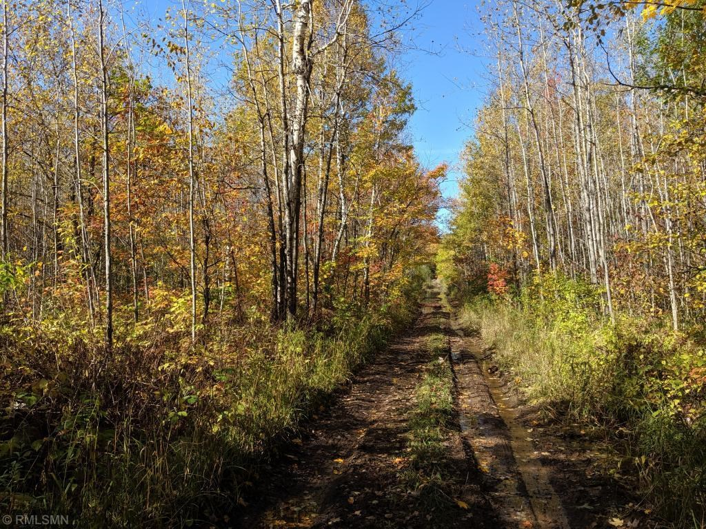 Wooded 10 Acre Parcel For Sale in Hinckley, Minnesota
