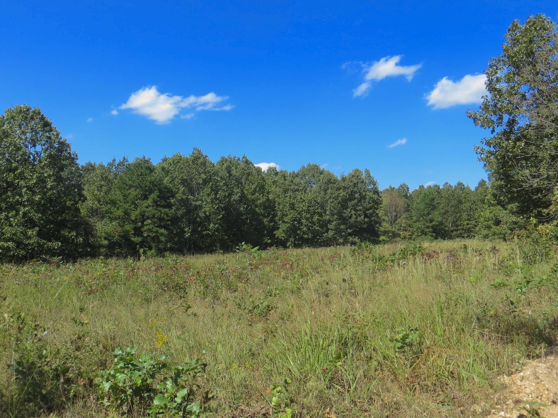 Land for Sale in Alton Missouri