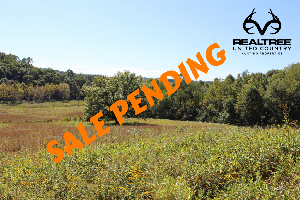 20 Acres in The Hocking Hills Region