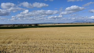GALLATIN COUNTY MONTANA PRODUCTIVE FARM LAND!