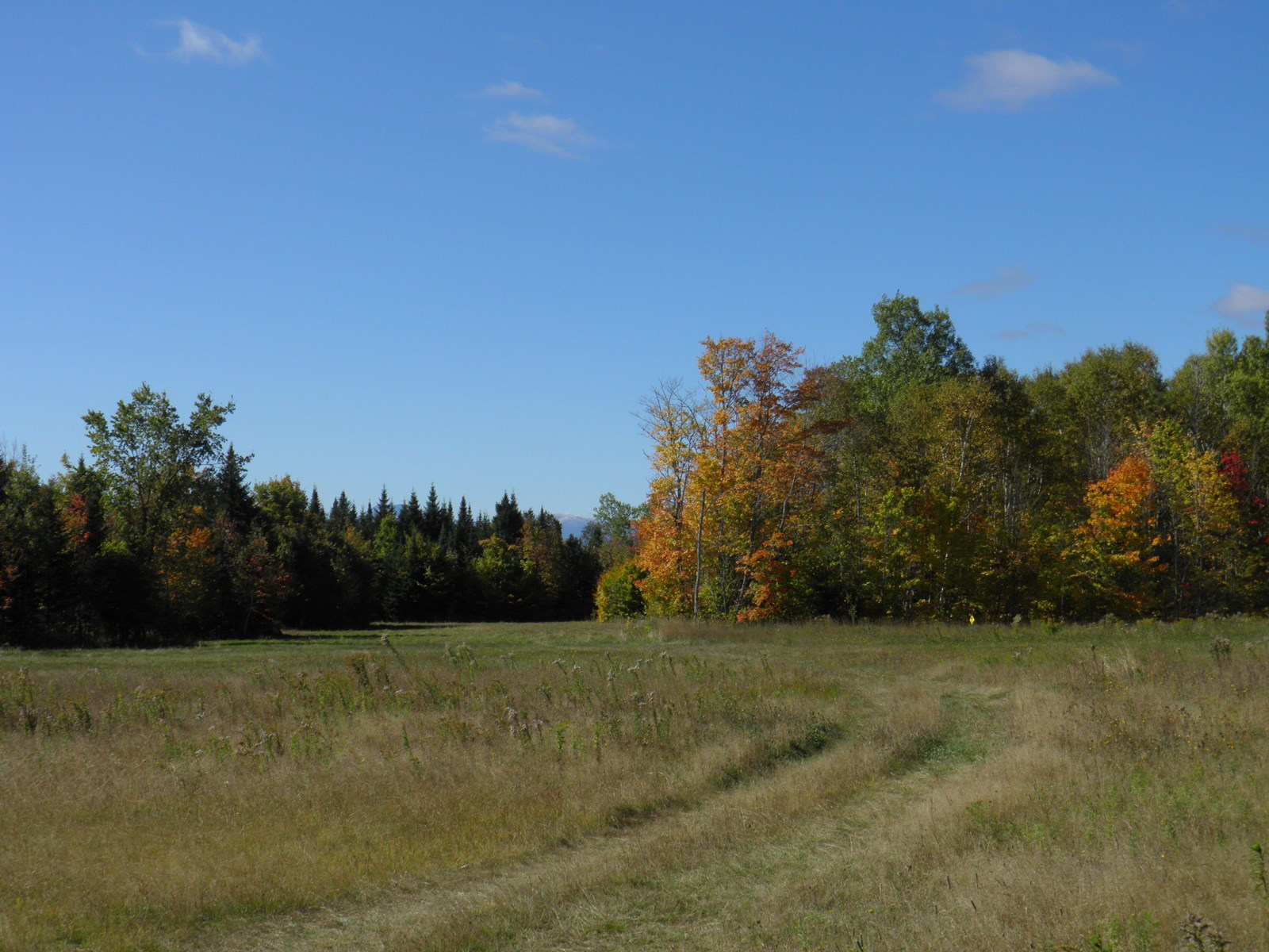 Farm Land For Sale in Mount Chase, Maine