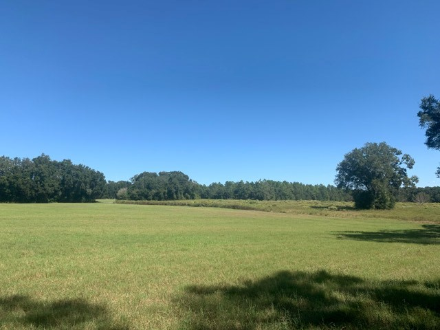 VACANT LAND FOR SALE BELL GILCHRIST COUNTY FLORIDA
