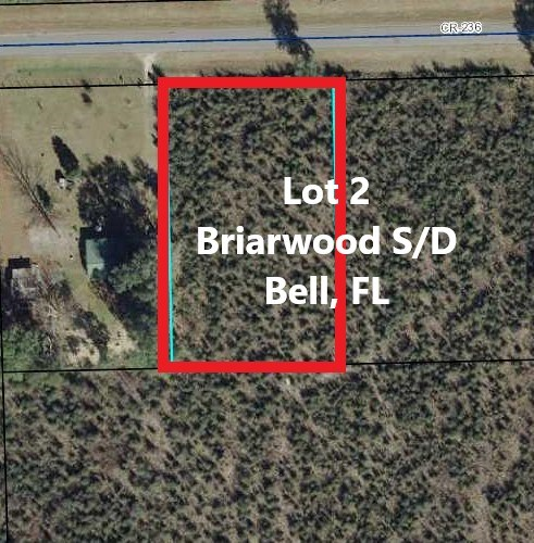 LOT FOR SALE BELL GILCHRIST COUNTY FLORIDA