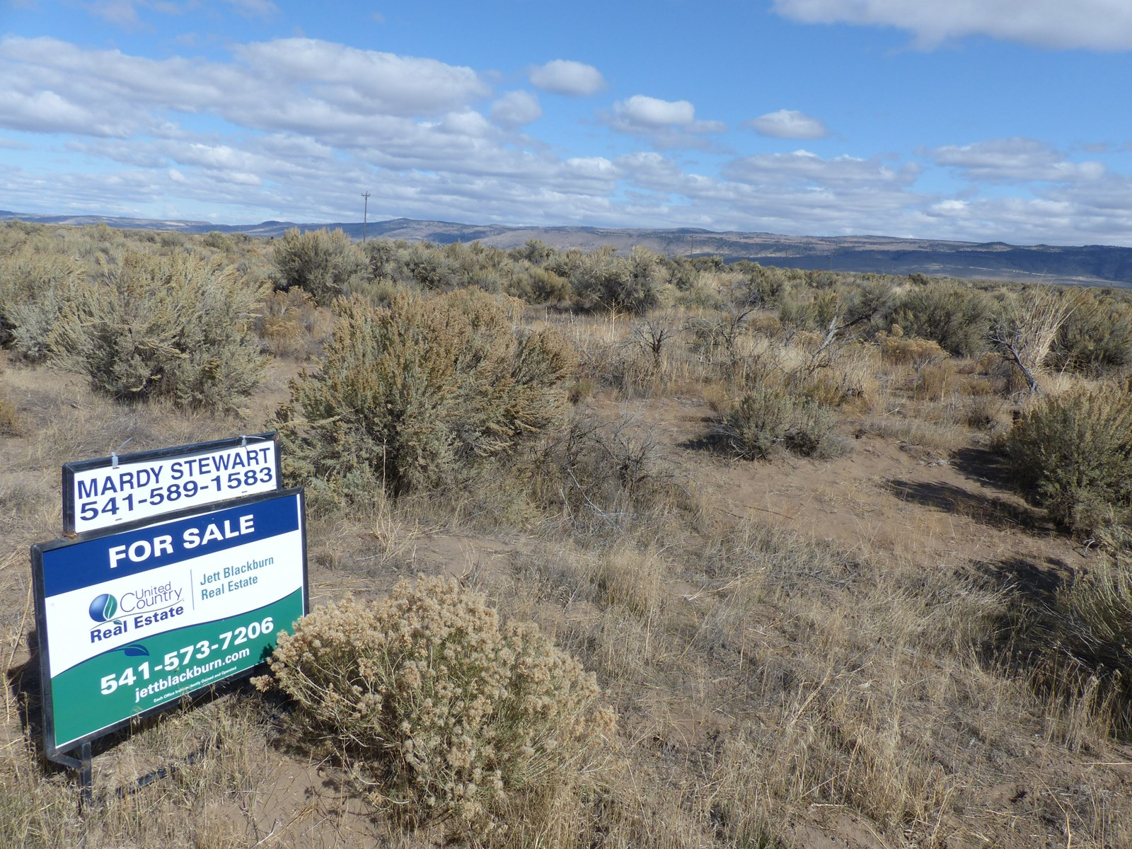 40 ACRES NEAR CRANE OREGON