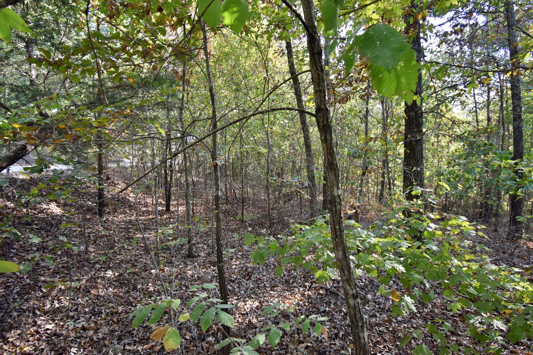 6.21 acres of Vacant Land in Humphreys County