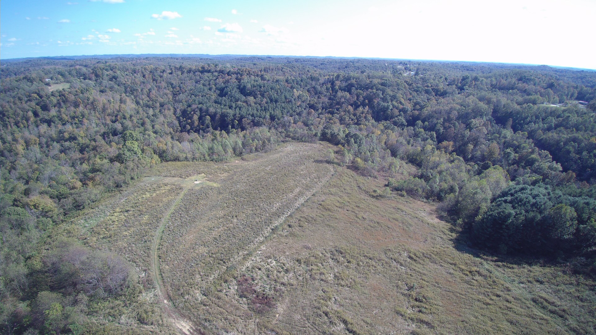 125 Acres Monroe County For Sale at Absolute Auction