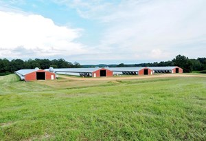 POULTRY BROILER FARM WITH NATURAL GAS FOR SALE MONTICELLO MS