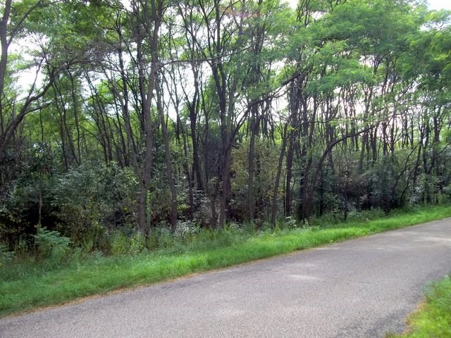 Vacant Lots +  Land for Sale in Saxeville, WI