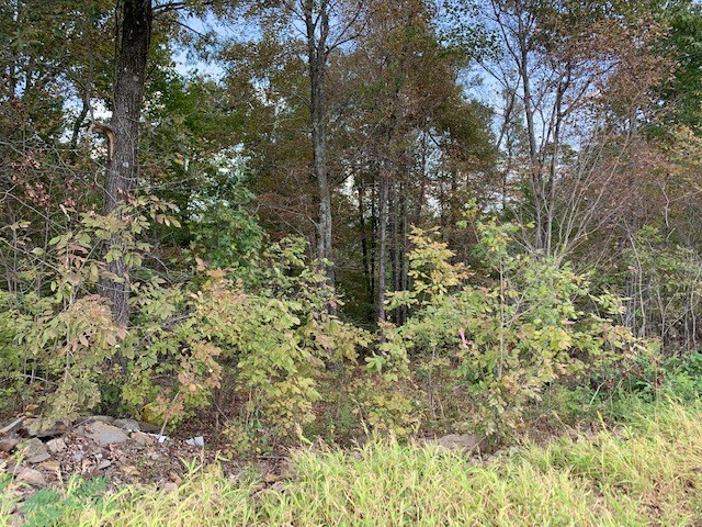 Hunting Land For Sale!!