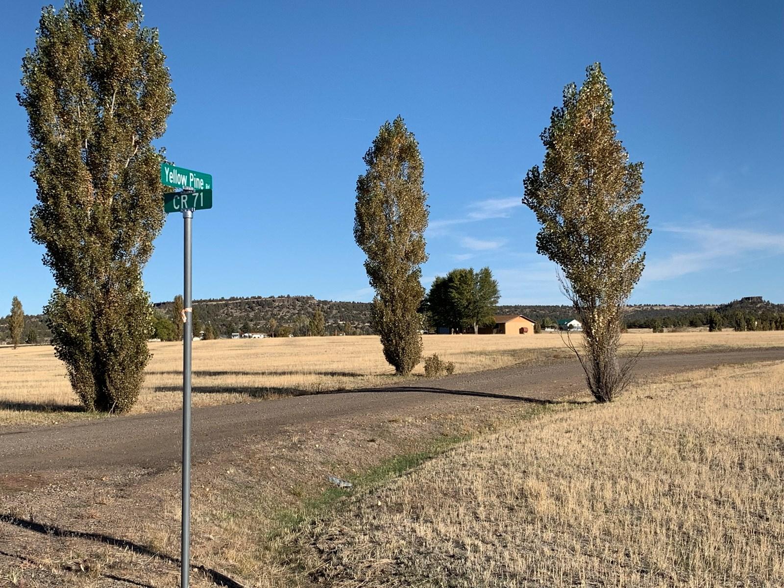 Cal Pines Lake Unit Lot For Sale