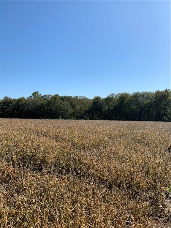 So Much to Offer!! 66 Acres Recreational, Row Crop & Hunting