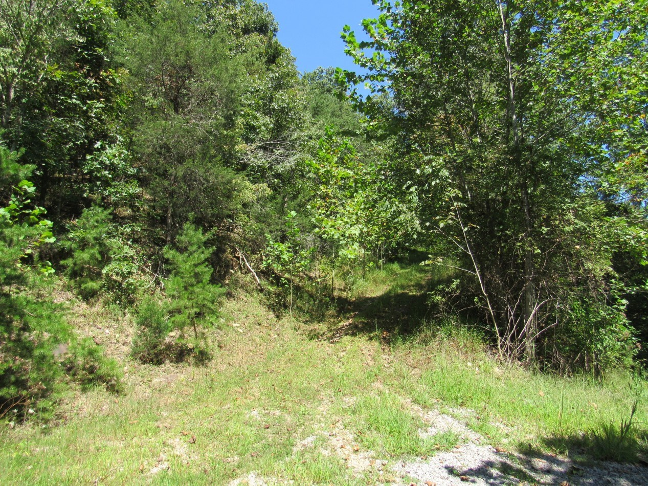 Recreational Building Lot With River Access For Sale In VA