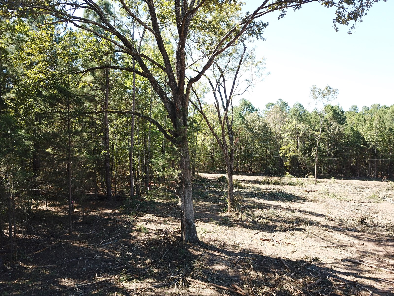 East Texas Rural home site/ land for sale
