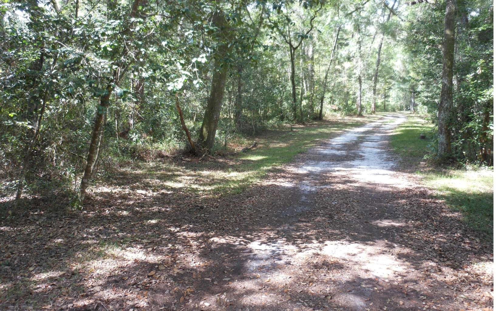 5 acres in secluded yet close to amenities land
