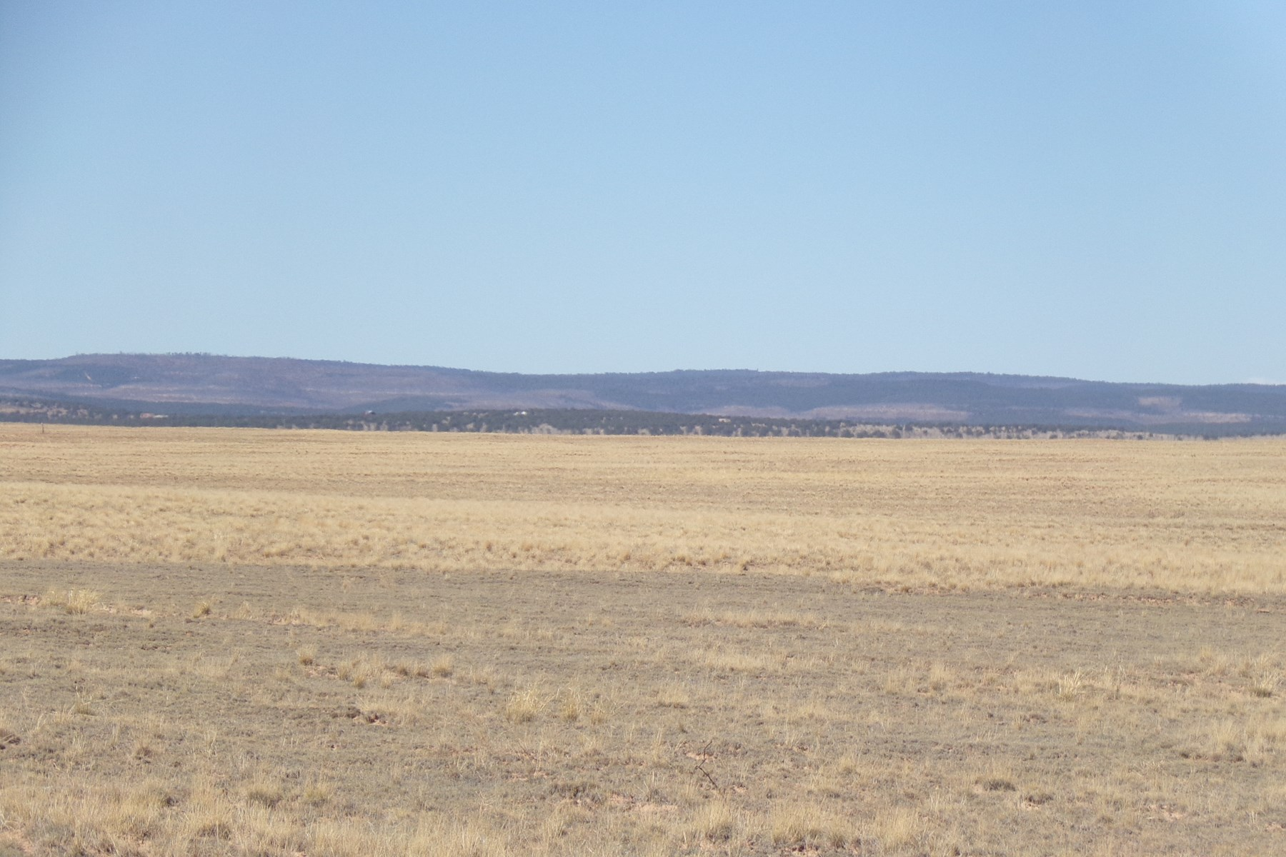 Farm & Ranch Land Estancia NM For Sale with Water