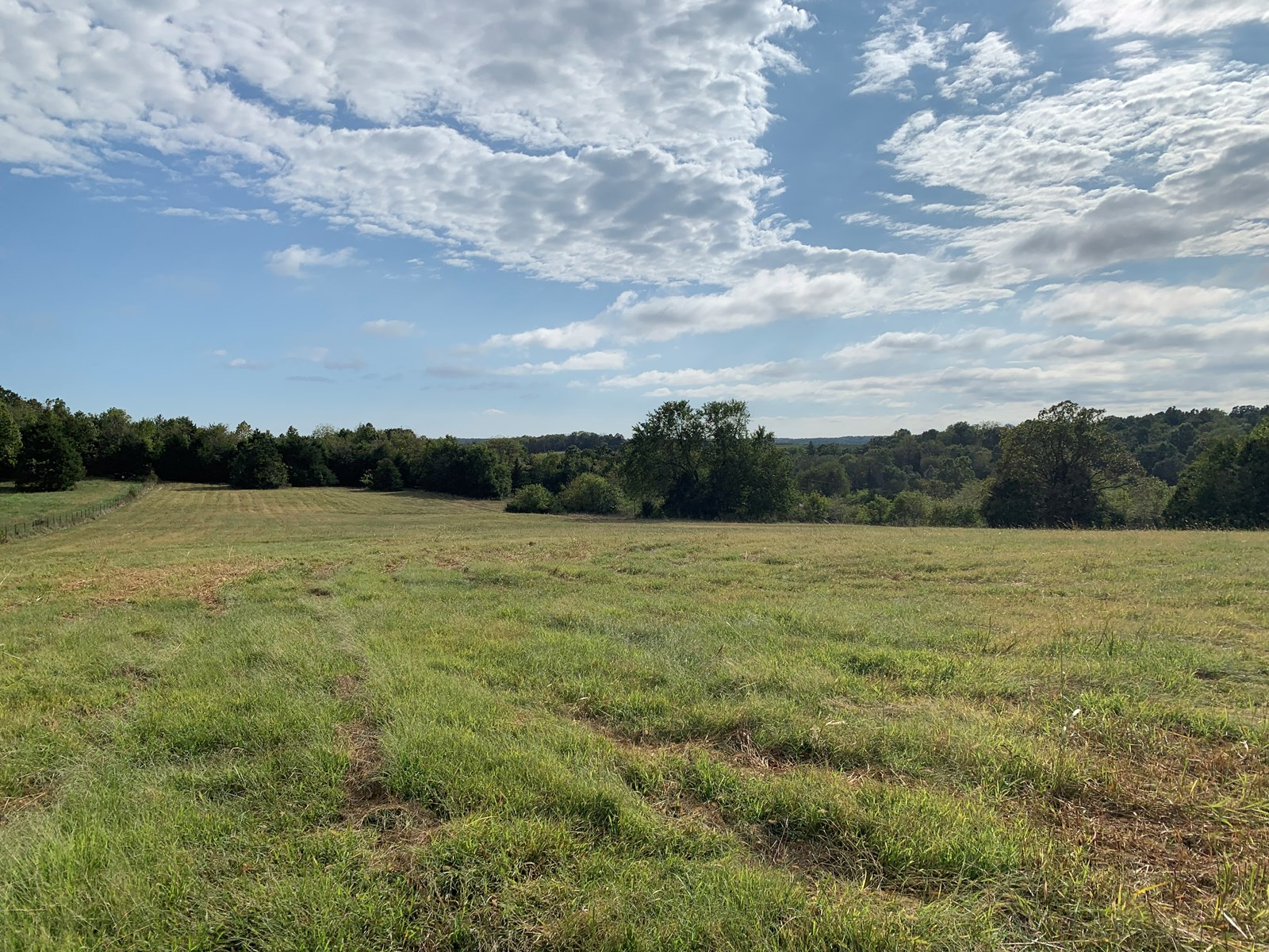 11 Acres, 3 Miles North of Springfield in Willard Schools