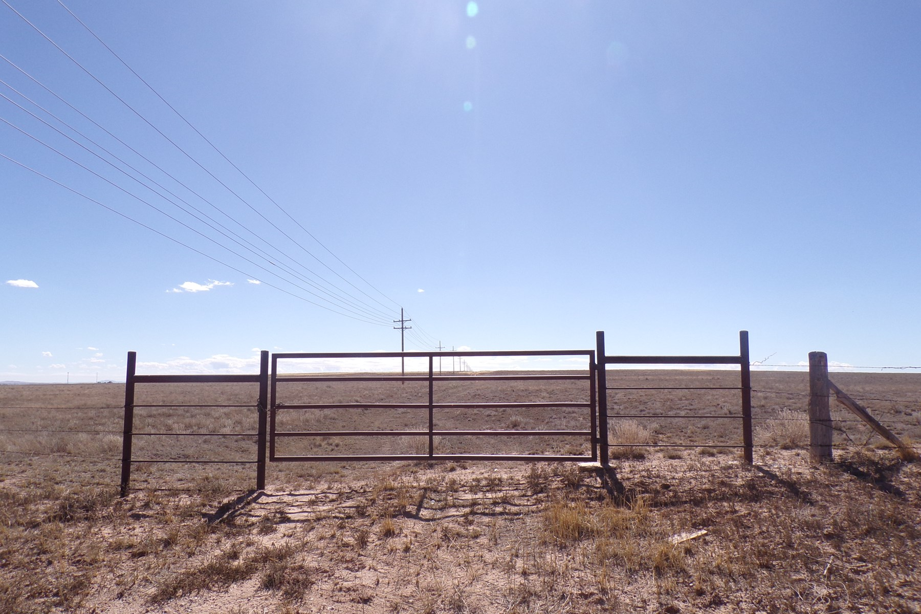 160 Acres of New Mexico Grazing Land For Sale