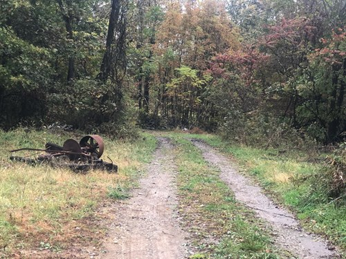 Jefferson County, OH 80.5 Acres of  Hunting Land