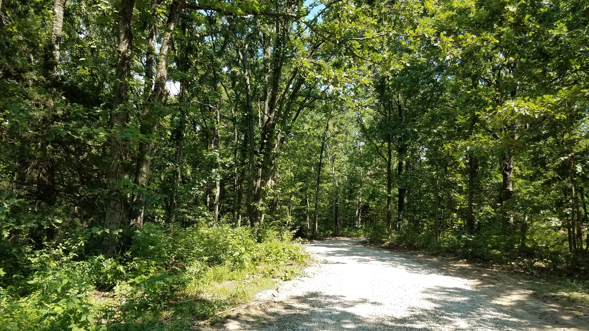 Vacant Land For Sale in Missouri! 40 Acres, Surveyed!