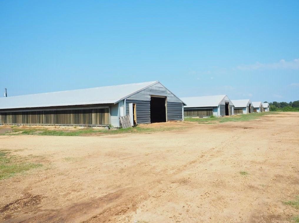 6 House Poultry Broiler Farm, 52 Acres, Bogue Chitto, MS