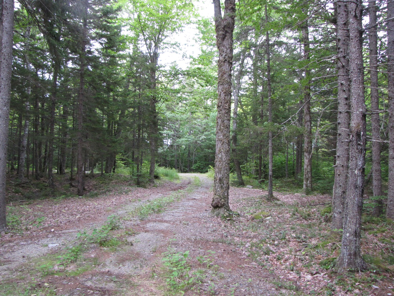 Recreational Land Lot For Sale in Maine