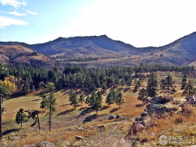 Build on Over 20 Acres in Northern Colorado Mountains!