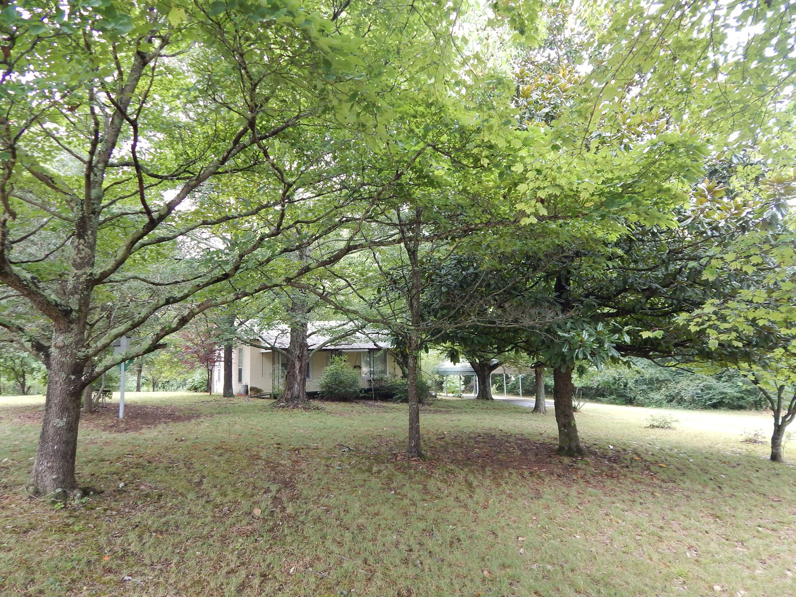 Tn. Country Home, 2 Acres, 2 Bed 1 Bath, Storm Shelter, Shad