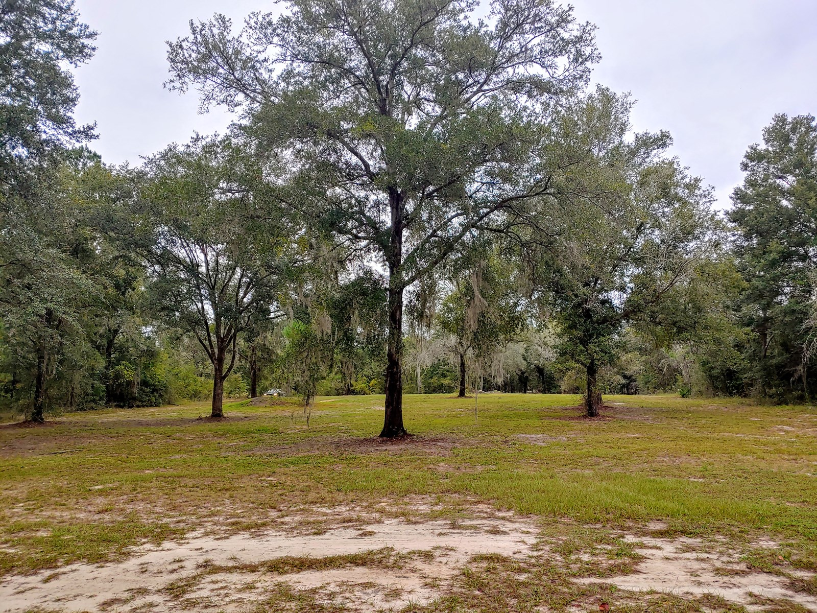 1 Plus Acres Bronson Florida Cleared Improvements