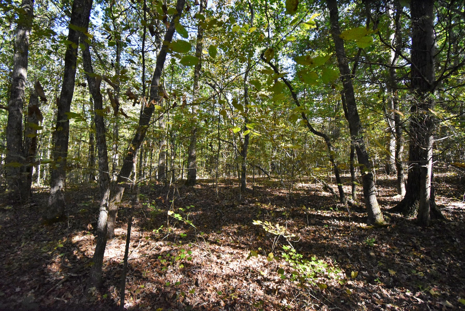 2.42 acres near the beautiful Tennessee River