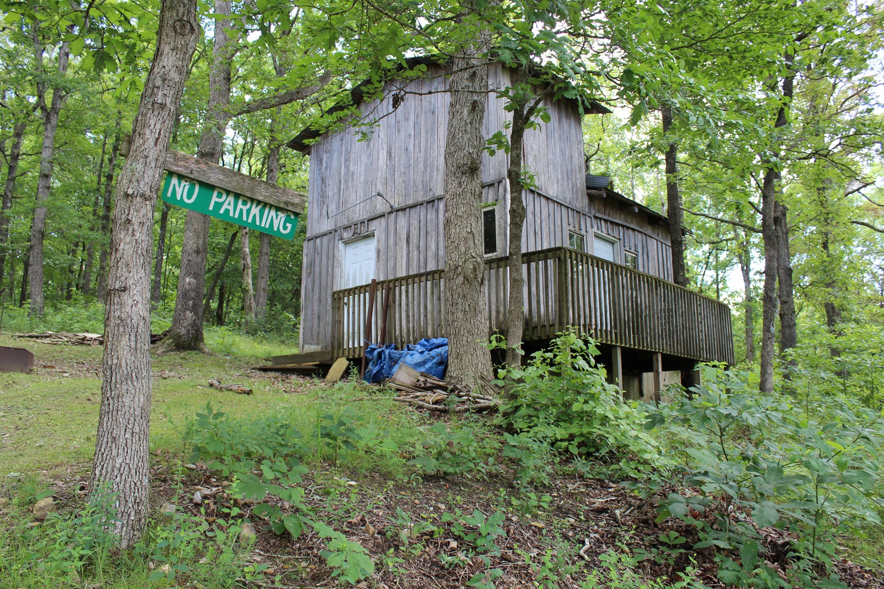 Land for Sale in Webster County, Missouri - Timber, Hunting