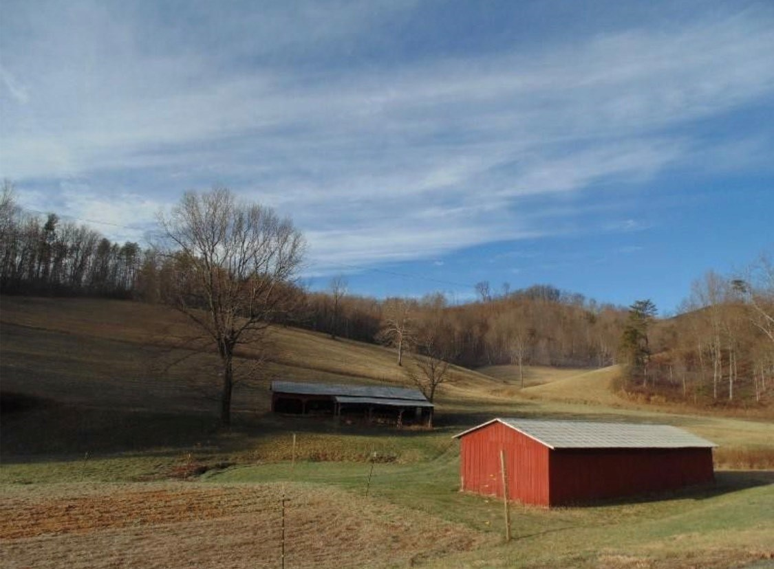Farm Land with Barn for Sale in Woolwine VA