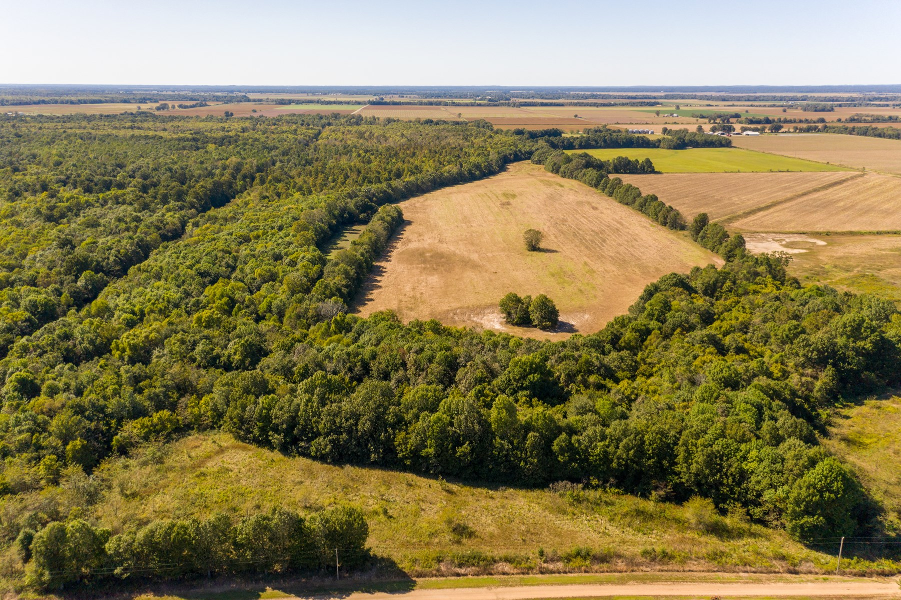 Arkansas Farm and Hunting Land For Sale