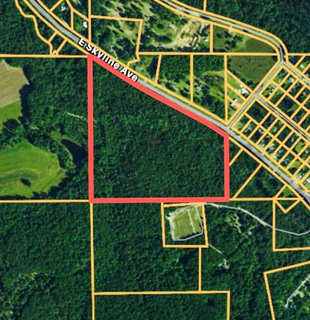 Land for Sale Geneva County AL 32 acres