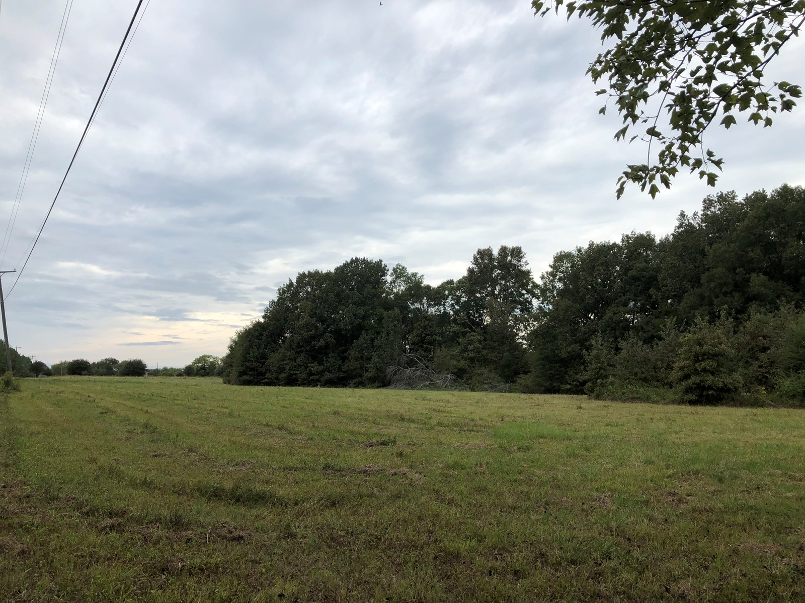 Land for Sale - Gilmer Wilburn Rd, Columbus, MS - 5 Acre Lot