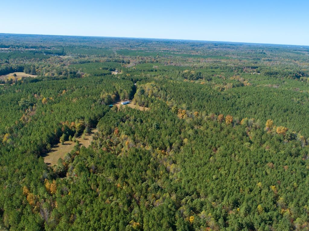 134 Acres Of Virginia Acres Near Kerr Lake, VA