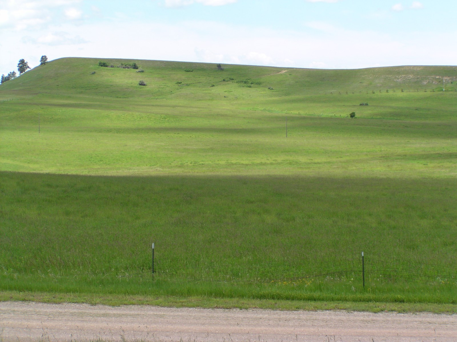 Room to Build For Sale in Central Montana Near Lewistown