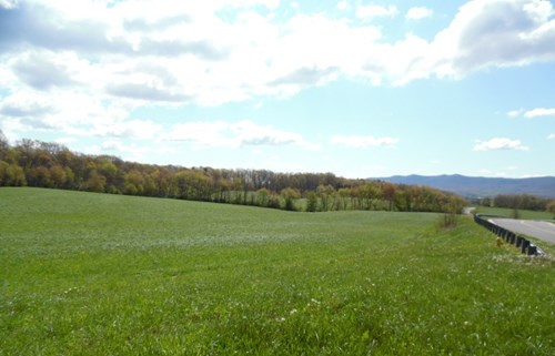 Commercial Property For Sale In Wytheville, VA--28.08 Acres