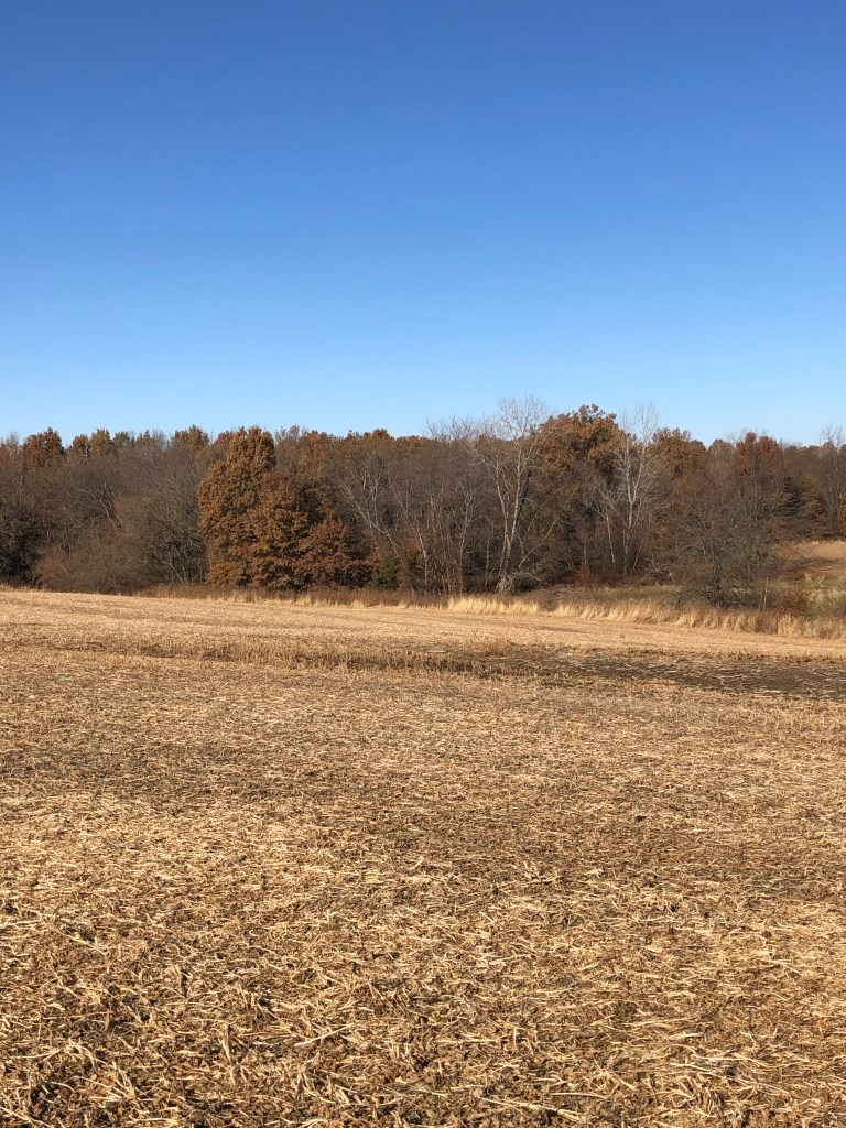 110 Acre Farm for Sale - Just East of Brookfield