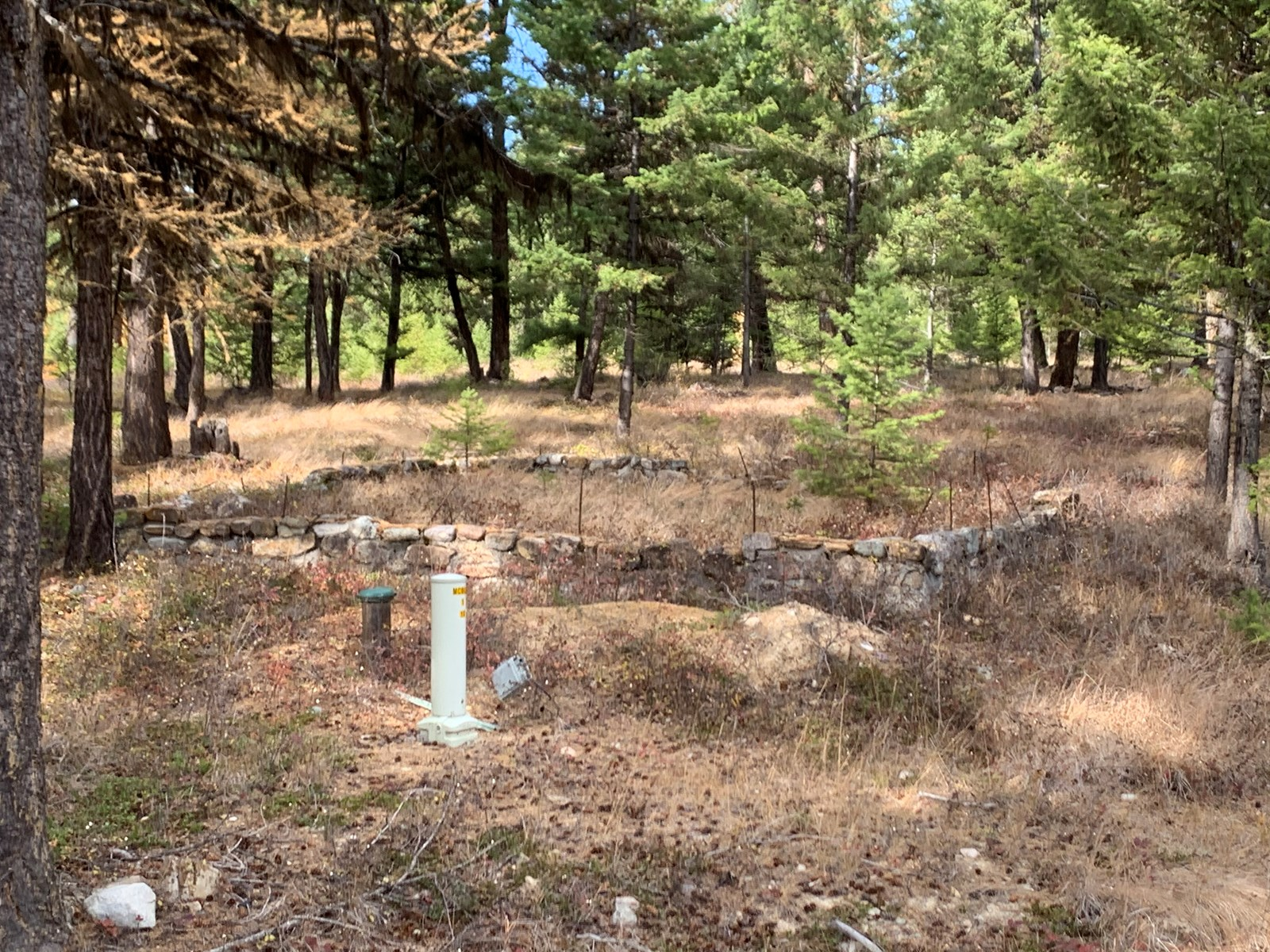 SECLUDED READY TO BUILD LAND FOR SALE LINCOLN COUNTY MONTANA